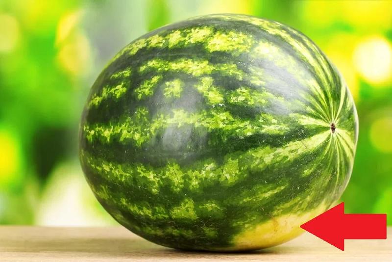 Как выбрать правильный спелый сладкий арбуз